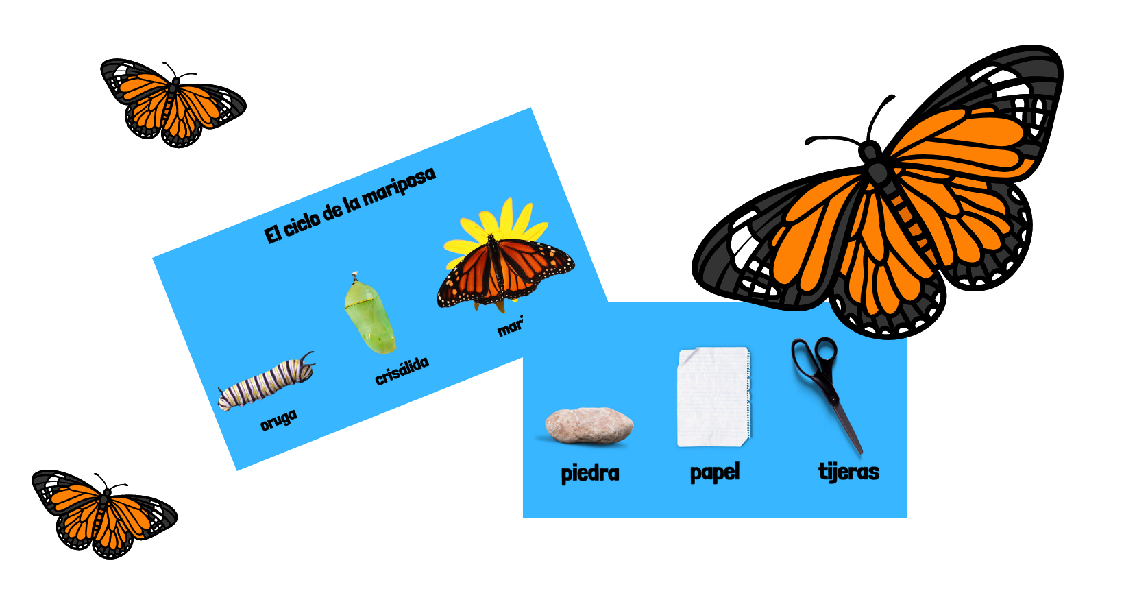BUTTERFLY LIFE CYCLE - GAME